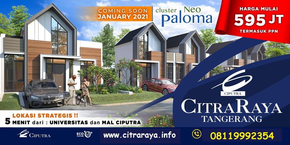 Cluster Neo Paloma